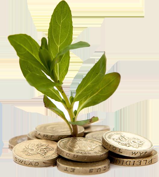 Ellipse Energy, one of the UK's leading energy efficiency companies.